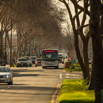 San Pablo Avenue Corridor, AC Transit Bus